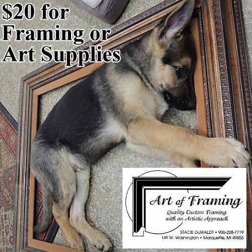$20 for Framing or Art Supplies